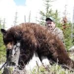 Bear_05