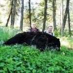 Bear_06