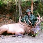 Elk_14